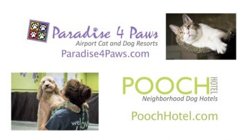 Paradise 4 Paws and Pooch Hotel
